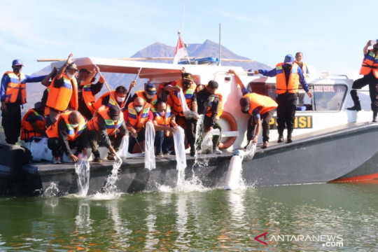 Bupati Bangli tebar 150 ribu benih ikan nila di Danau Batur