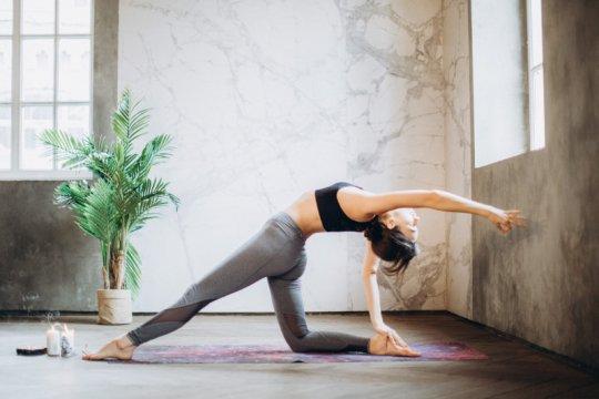 Kementerian Kesehatan dan Kedutaan Besar India gelar yoga virtual