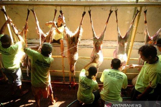 Penyembelihan hewan kurban di zona merah hendaknya dilakukan di RPH