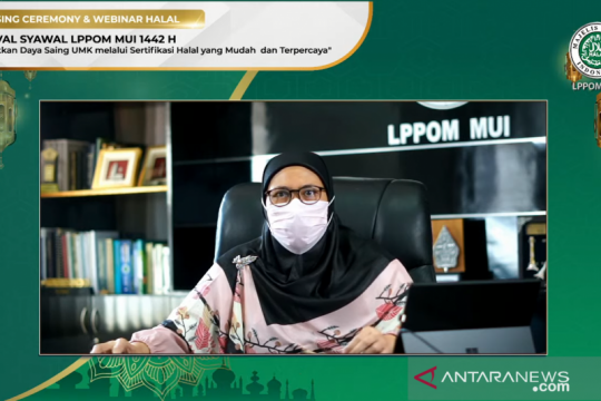 Lindungi produk, MUI dorong UMK untuk urus sertifikasi halal