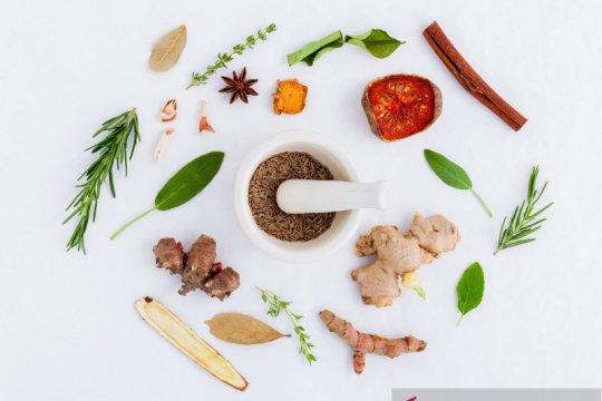 Bisakah obat herbal jadi alternatif pengobatan COVID-19?