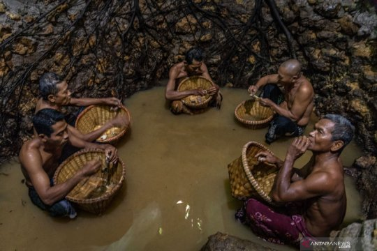 Tradisi membersihkan mata air Sendangsari petilasan Sunan Kalijaga