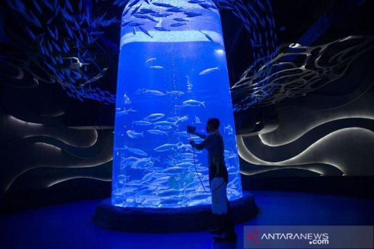Perawatan satwa koleksi Jakarta Aquarium dan Safari
