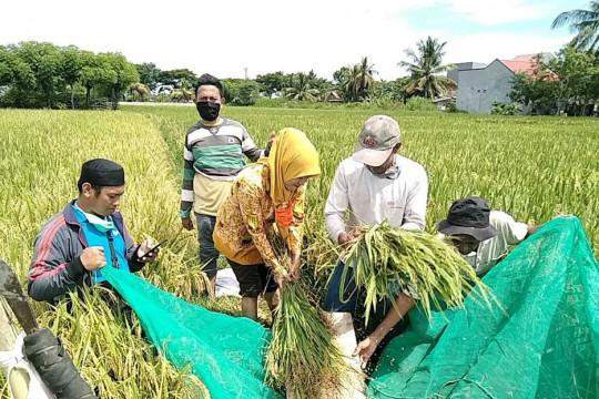 PT Mega Eltra perkuat bisnis di Lampung