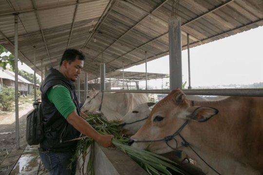 SATU Indonesia Awards Astra ajak anak muda minati sektor agribisnis