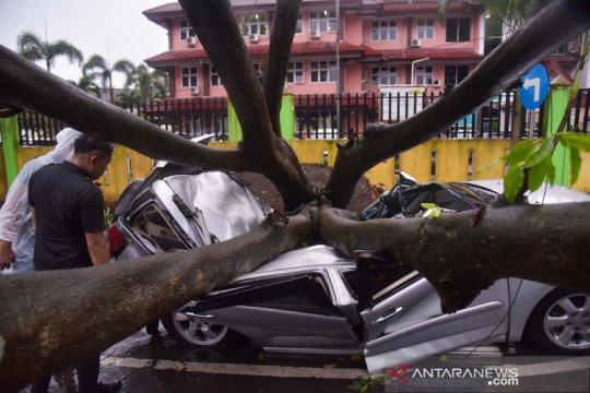 Dua orang meninggal dan lima luka-luka akibat tertimpa pohon tumbang di Medan