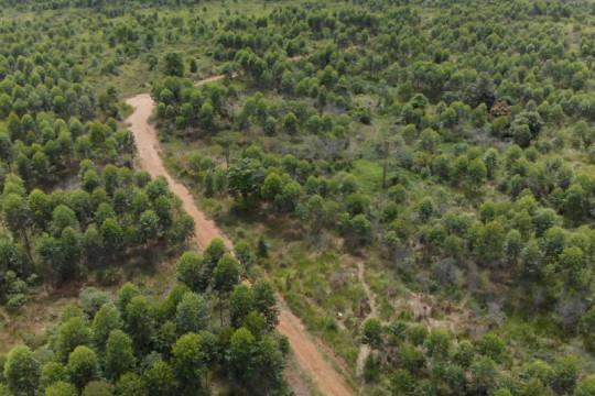 Kementerian ATR-KLHK percepat penyediaan tanah reforma agraria