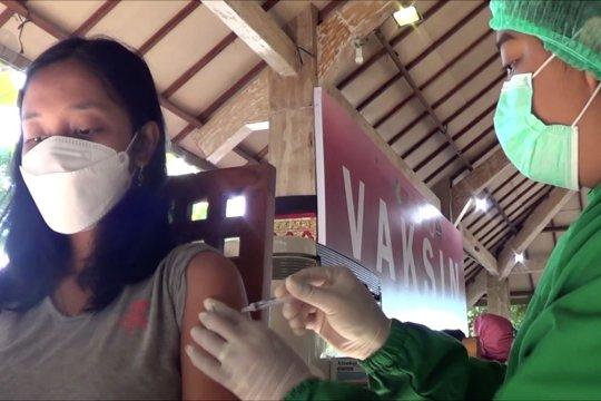 Bali percepat vaksinasi massal