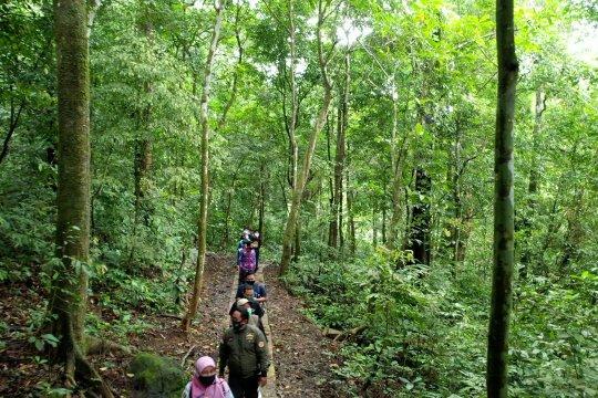 Hutan simpan kebaikan - Bagian 2