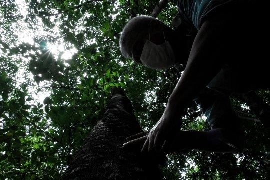 Hutan simpan kebaikan - Bagian 3