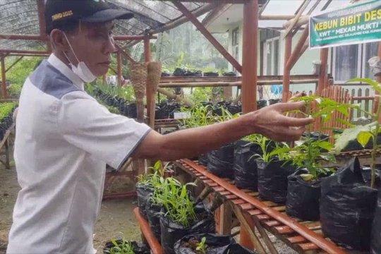Cara warga Kuningan wujudkan kemandirian dan ketahanan pangan