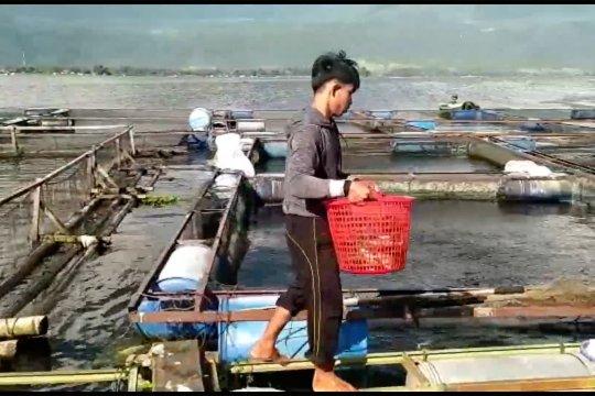 Revitalisasi Danau Maninjau dimulai dari mengangkat KJA terbengkalai