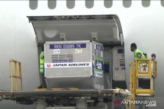 Syarief Hasan apresiasi Jepang kirim AstraZeneca ke RI