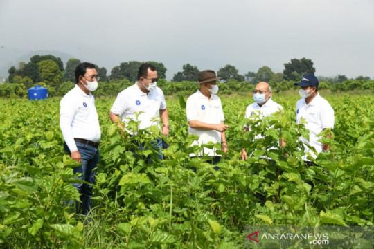 Petani binaan IPB University sudah mampu ekspor tanaman hias