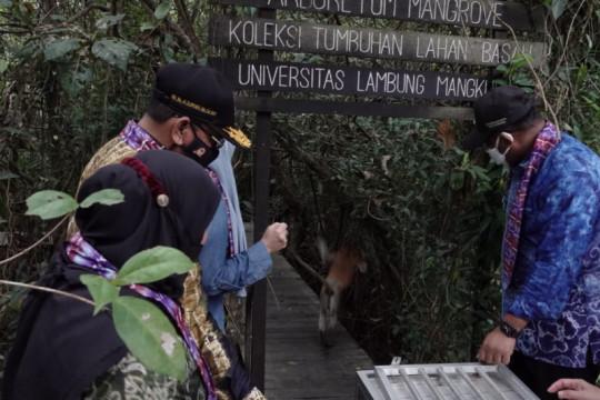 Pemprov Kalsel dukung pengembangan konservasi bekantan di Batola