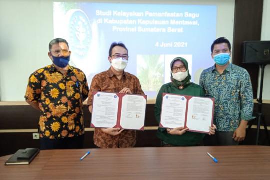 IPB University-Kabupaten Mentawai kerja sama pemanfaatan sagu