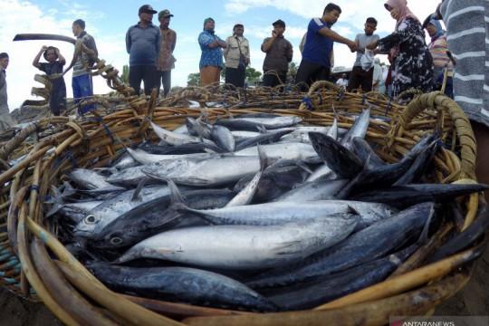 BUMN perikanan-peternakan pastikan stok pangan aman saat PPKM Darurat