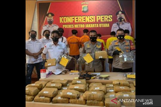 Polrestro Jakarta Utara sita 50 kg ganja dari kaki tangan bandar Sumut
