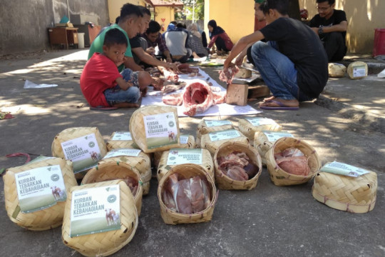 Dompet Dhuafa tebar 1.000 hewan kurban di Sulsel-Sulbar-Palestina