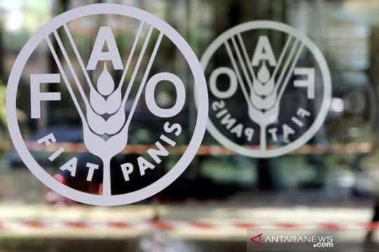 FAO: Pertumbuhan produktivitas pangan Indonesia harus atasi stunting