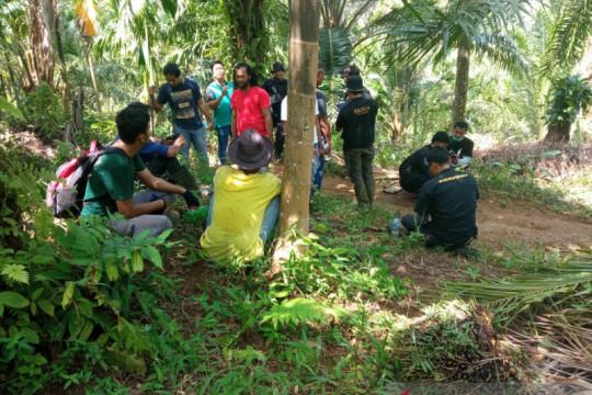 426 hektare hutan Cagar Alam Maninjau dirambah untuk perkebunan