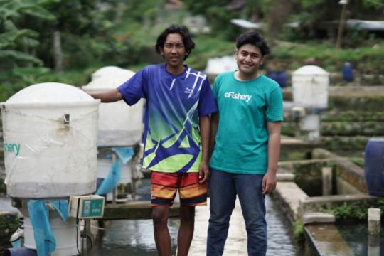 6.000 pembudidaya perikanan masuk ekosistem digital e-Fishery