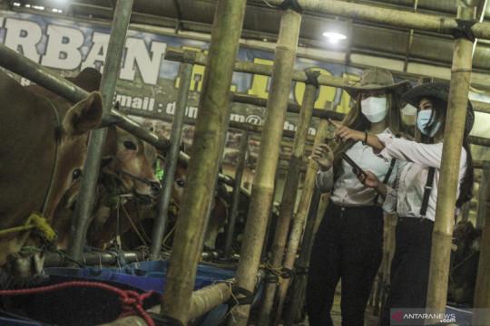 Penjualan hewan kurban menggunakan SPG