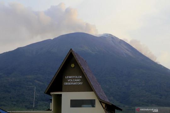 Gunung ili Lewotolok erupsi lagi, tinggi kolom abu capai 800 meter
