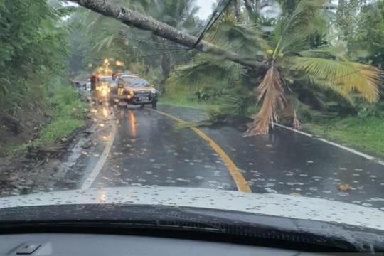 PLN UP3 Manado perbaiki jaringan listrik putus akibat cuaca ekstrem