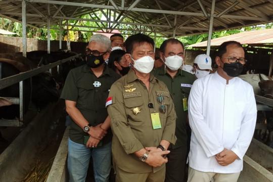Mentan bersama Wali Kota Makassar pantau ketersediaan hewan kurban