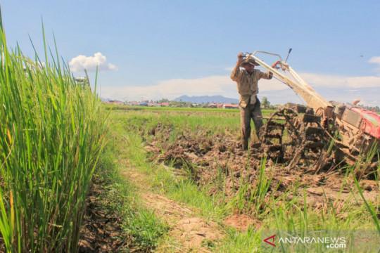 Pemkab Tanah Datar beri layanan bajak sawah gratis tahun depan
