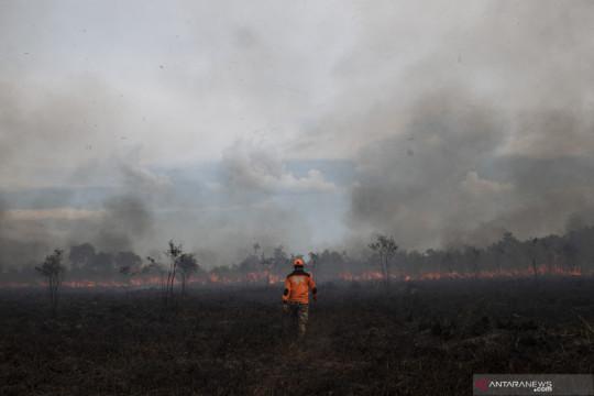 Kebakaran lahan di Okan Ilir