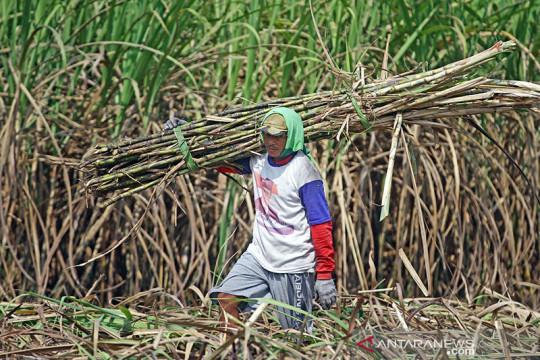 Anggota Komisi VI DPR dorong Kemenperin audit pabrik gula di Jatim