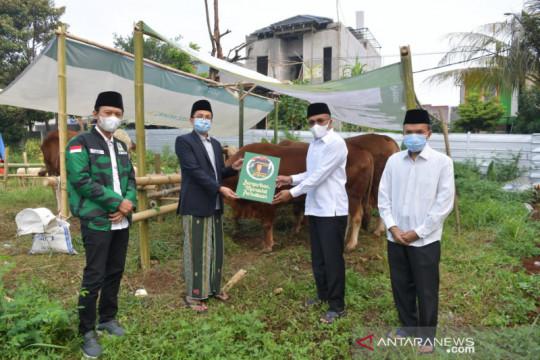 PPP bagikan hewan kurban sampai ke pelosok Indonesia