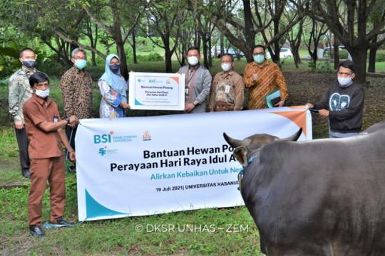 BSI salurkan lebih dari 3.000 hewan kurban