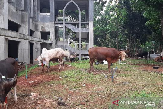 Jakarta kemarin, persiapan Idul Adha hingga vaksinasi di Jakarta