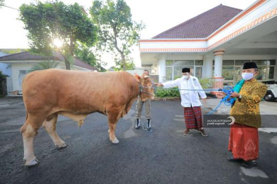 Daging kurban di Kota Madiun-Jatim dibagikan untuk 900 anak stunting
