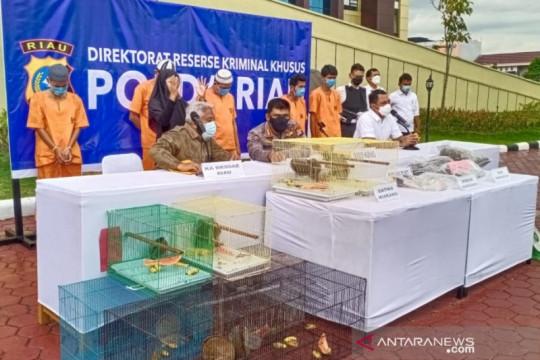 Polda Riau waspadai penjualan satwa dilindungi di media sosial