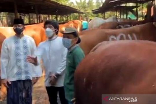Sandiaga Uno berbagi 1.000 hewan kurban