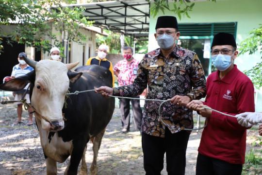 Sleman gelar Tebar Kurban di masjid yang belum pernah sembelih sapi