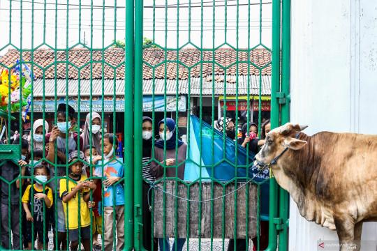 Kemenparekraf - Gabungan Industri Pariwisata salurkan hewan kurban