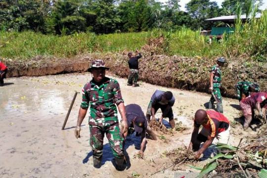 Satgas TNI bersama warga Papua di perbatasan budidaya ikan nila