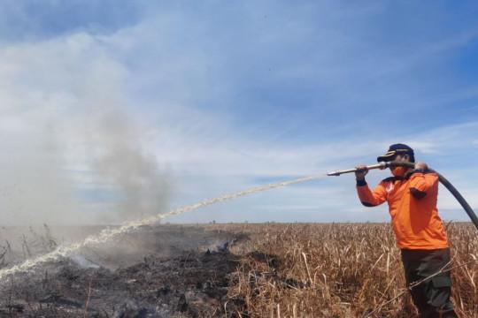 Gubernur Riau ingatkan buka lahan dengan membakar bisa dijerat hukum