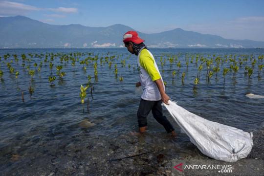 Aksi bersihkan sampah plastik di pantai Teluk Palu