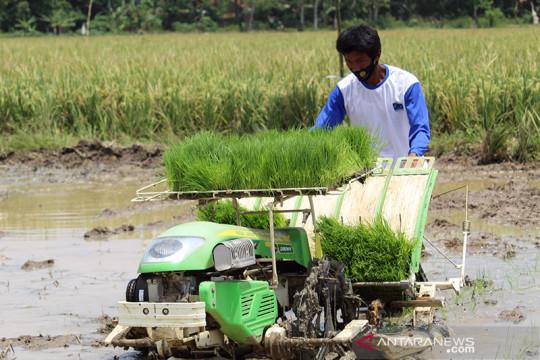 G33 sepakat isu ketahanan pangan-pertanian jadi paket kebijakan di WTO