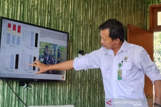 BTNK dalami dugaan pencurian terumbu karang di kawasan TN Komodo
