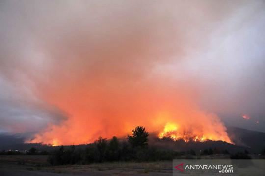 Ribuan rumah di California terancam kebakaran hutan