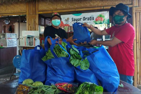 Petani Songan-Bangli berbagi sayuran gratis untuk warga  Kota Denpasar