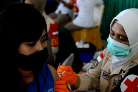 Ternate siap vaksinasi ibu hamil dan remaja