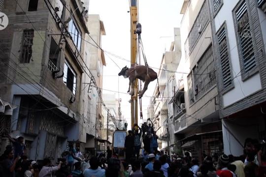 Peternak Pakistan pindahkan hewan kurban dari atap rumah dengan derek